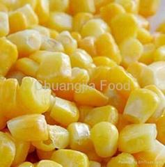 Frozen vegetable-Frozen Sweet Corn Kernel