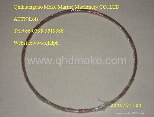 Guangchai diesel engine equipment 2