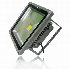LD-FL-50W-CL1+LED FloodLight 50W