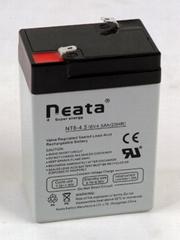 Battery 6V-4.5ah (ISO, CE, UL, RoHS)