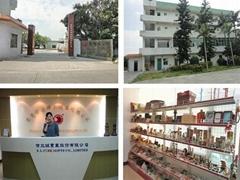 Dongguan Yunxiang Handicrafts CO.,LTD