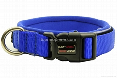 waterproof custom neoprene dog/pet collar