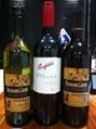 西拉葡萄酒 4