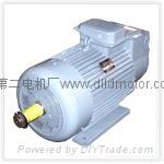 YZR系列冶金起重电机