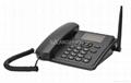 GSM无线电话 4