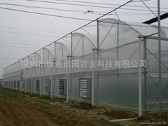 Terraced greenhouse