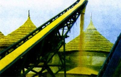Pattern Conveyor Belt 2