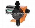 Micro Mechanical Membrane Pump for Water
