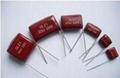 Miniature metallized  polyeser