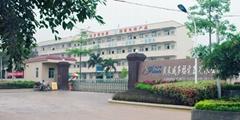 Guangdong Weiduofu Group Co., Ltd