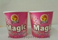 Icecream paper bowl