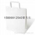 生产110克白色牛皮纸纸袋纸 1