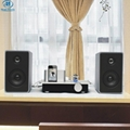 Bluetooth Tube amplifier for Ipad/Iphone 4S 4