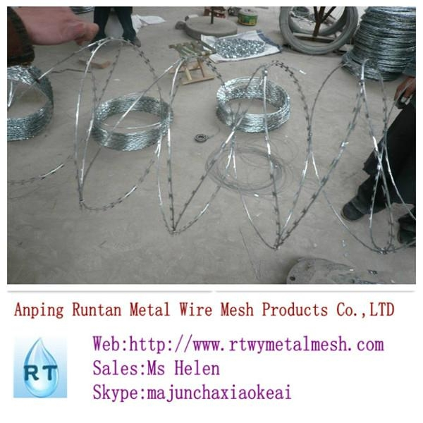 hot dipped ga  anized razor barbed wire (top quality) 4