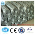 professional manufacturer grassland fence(factory)