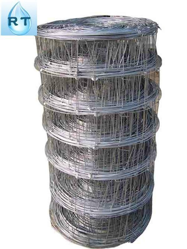 professional manufacturer grassland fence(factory) 3