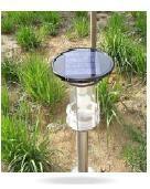 太阳能LED花园灯 1