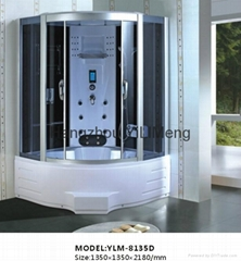 Luxury Whirlpool Bathtub Steam Shower Room