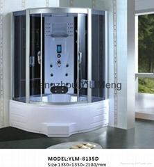 Luxury Whirlpool Bathtub Steam Shower Room