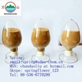 water reducing agent 1