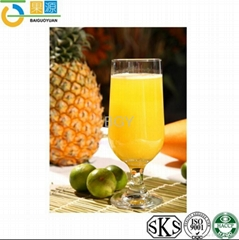 High Quality Pineapple Juice Concentrate