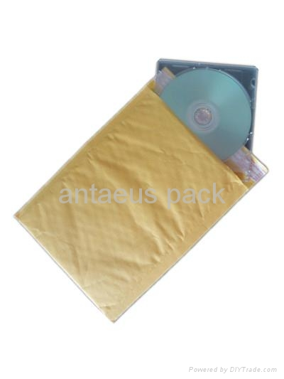 Express Bag, Kraft Bubble Envelope 1