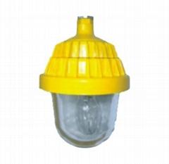 防爆平臺燈