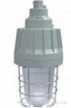 優質防爆燈具防護罩