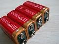 环保碱性2号电池