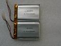 电子阅读器专用软包电池