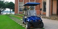 Resort Cart