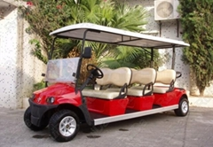 6 seater sightseeing car