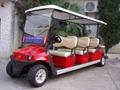 11 Passenger Resort Cart