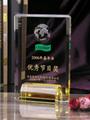 Crystal Awards Trophy