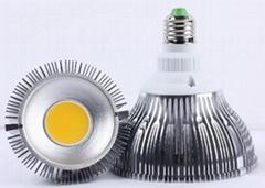 15W  COB LED 射燈聚光燈