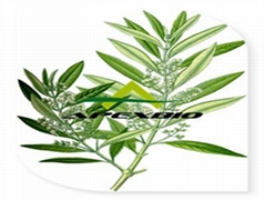 Sell Olive Leaf Extract