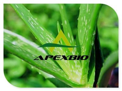 Aloe Vera Extract Powder 1