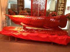 和谐盛世4米长金龙鱼