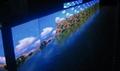 Perimeter LED display