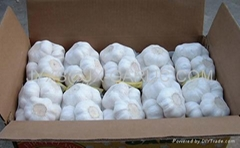 纯白大蒜500g小包装