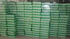 Fresh Normal White Garlic 10kg per carton*