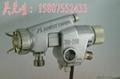 日本岩田WA200自動噴槍
