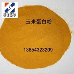 山东玉米蛋白粉饲料