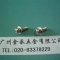 不鏽鋼三組合螺釘