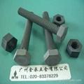 PVC防腐塑料螺絲 1