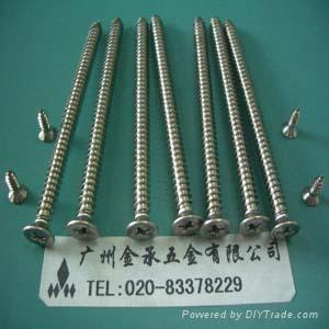 不鏽鋼精密電子螺釘 1