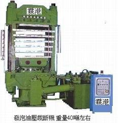 橡胶塑胶加工发泡热压油压机