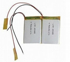 lithium ion battery pack for PDA, GPS and PMP