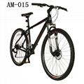 29-Inch Rush Mountain Bike-Black