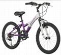 20-Inch Wheels Mountain Bike for girls